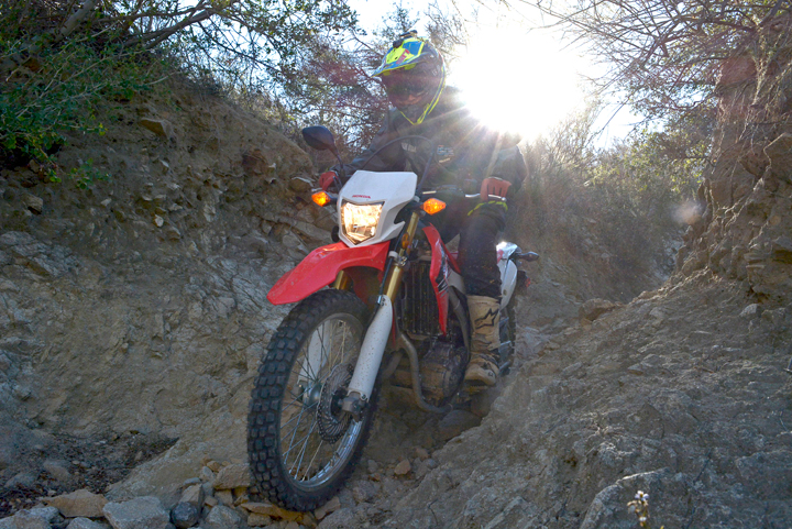 The CRF250L isn't light, but its chassis is well-sorted and nimble enough to tackle rough terrain at a reasonable pace.